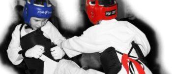Кубок главы администрации муниципального образования «Светлогорский городской округ» по рукопашному бою